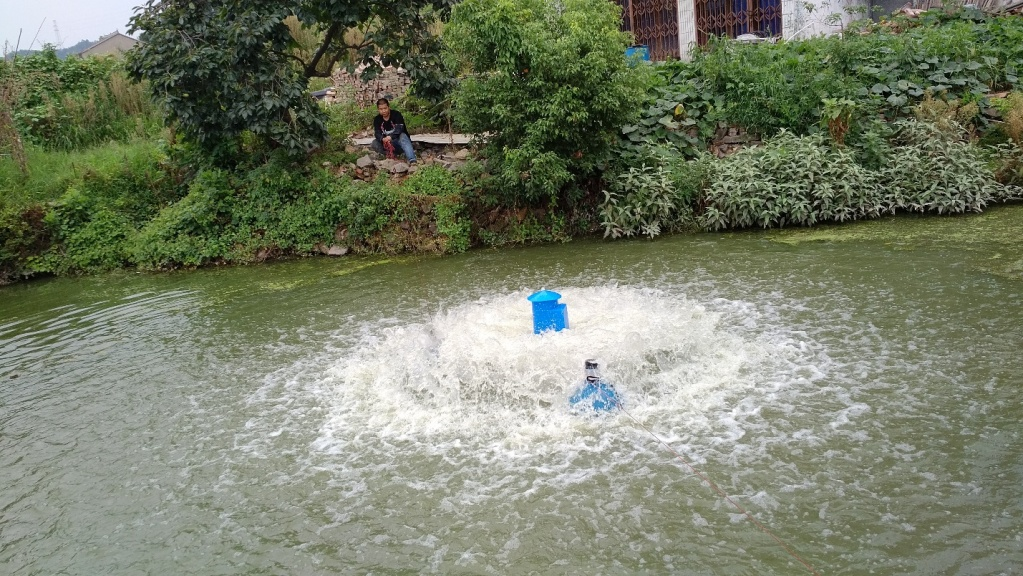 Фото 1. «Рабочая лошадка» китайской аквакультуры: роторный аэратор с редуктором